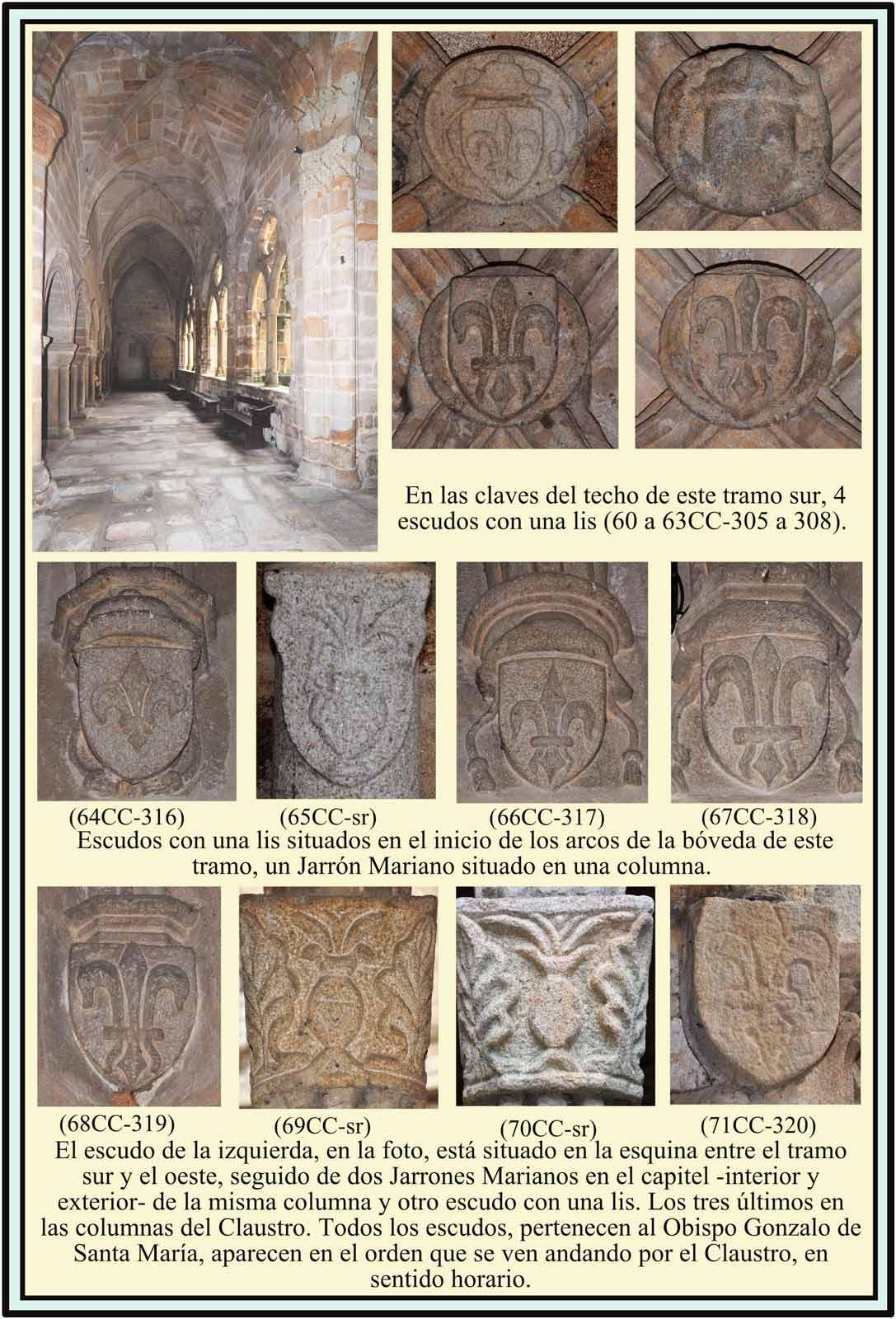 Catedral Vieja escudos con flor de Lis y Jarron Mariano