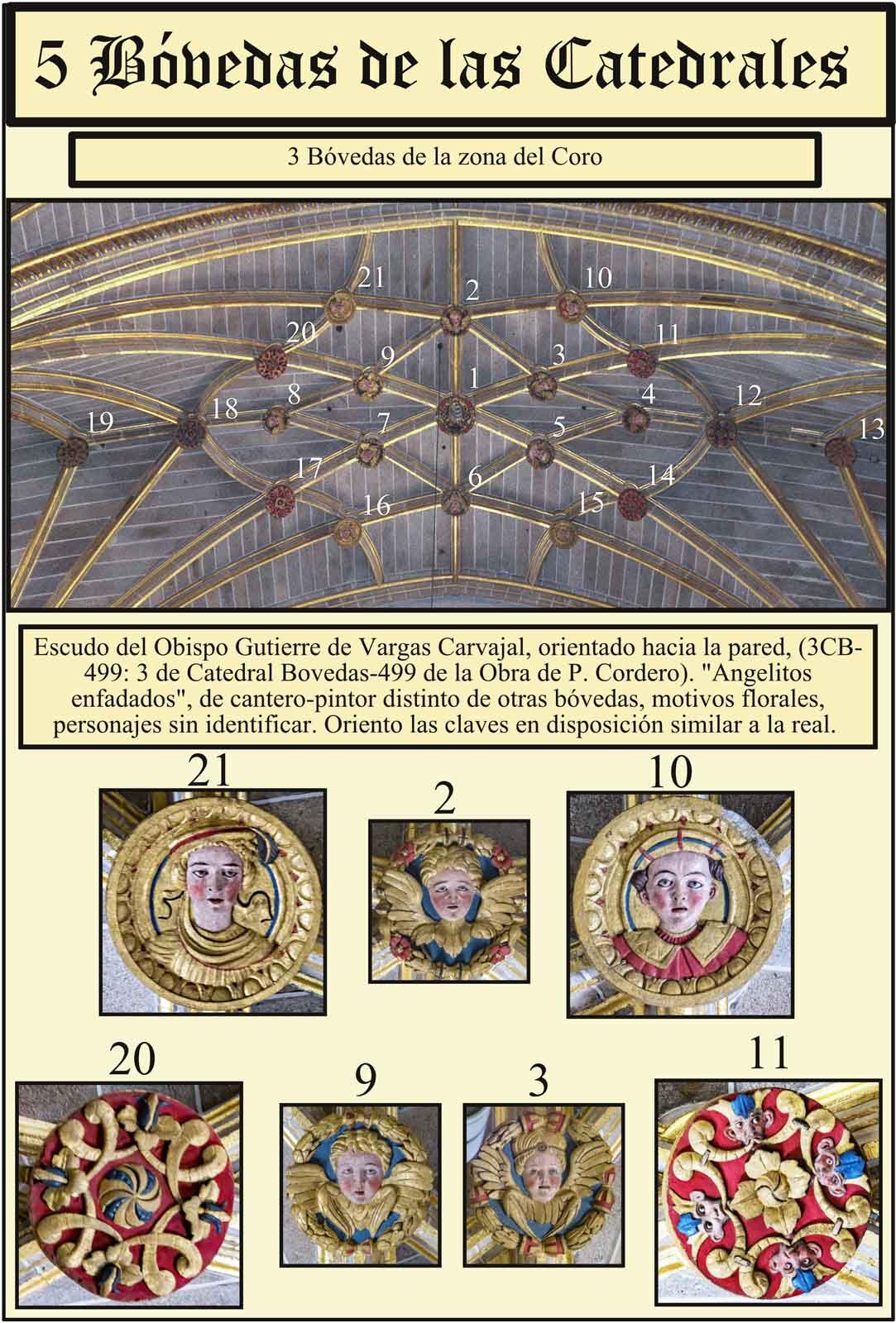 Boveda de cruceria gotica en el coro de la Catedral  Plasencia
