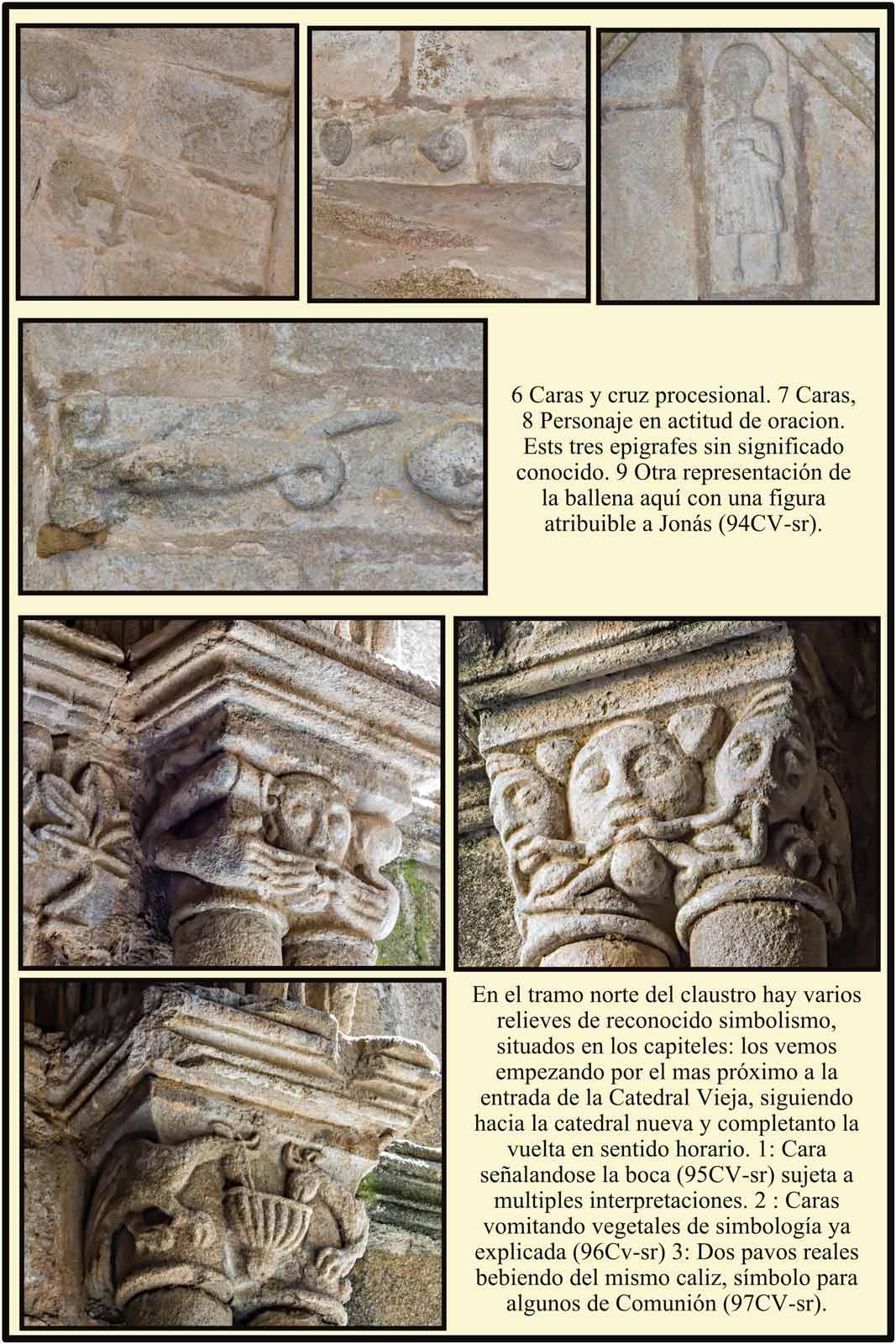 claustro de catedral vieja de Plasencia Jonas y la ballena caras vomitando vegetales