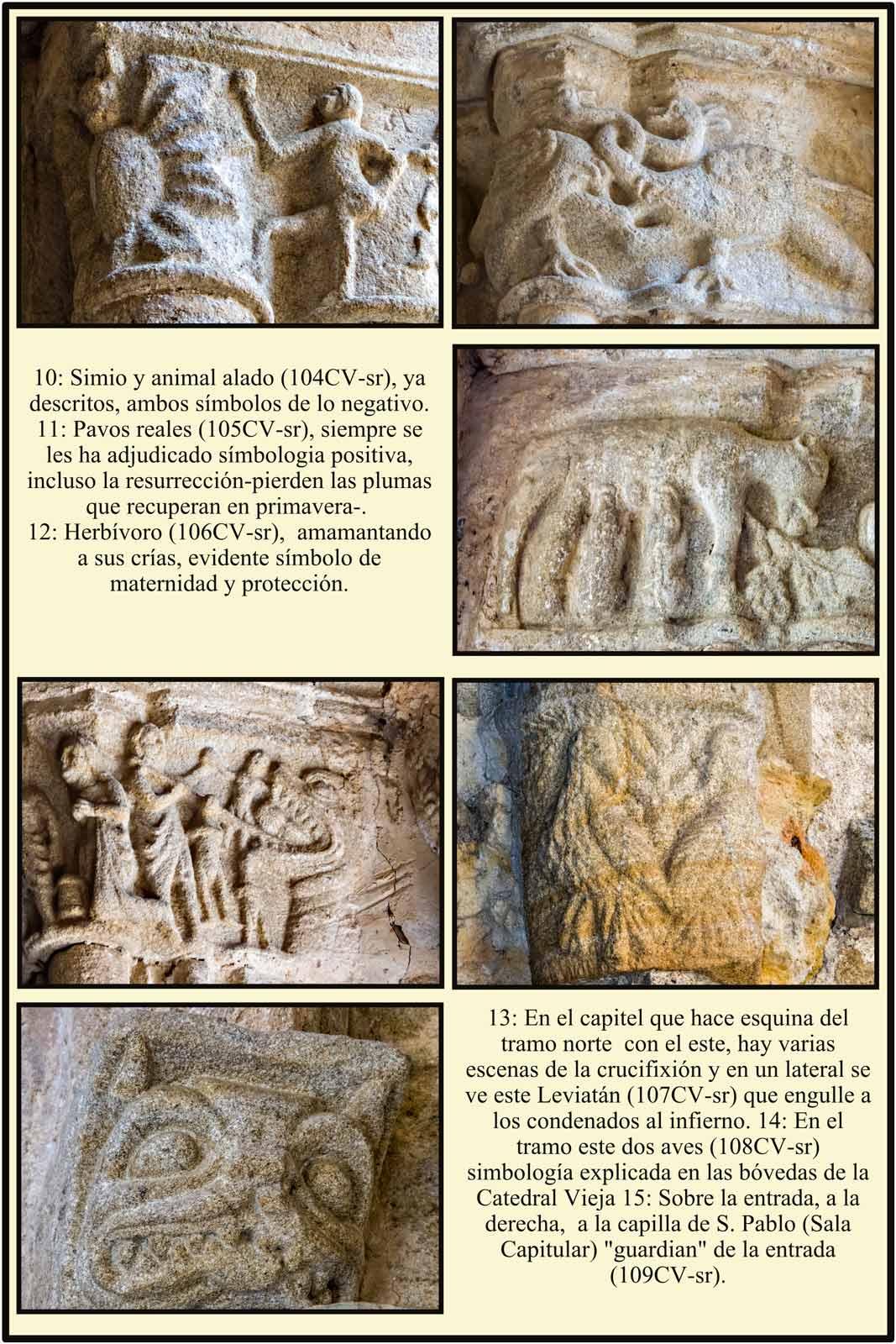 Simbolos en el romanico de los capiteles de la Catedral de Plasencia