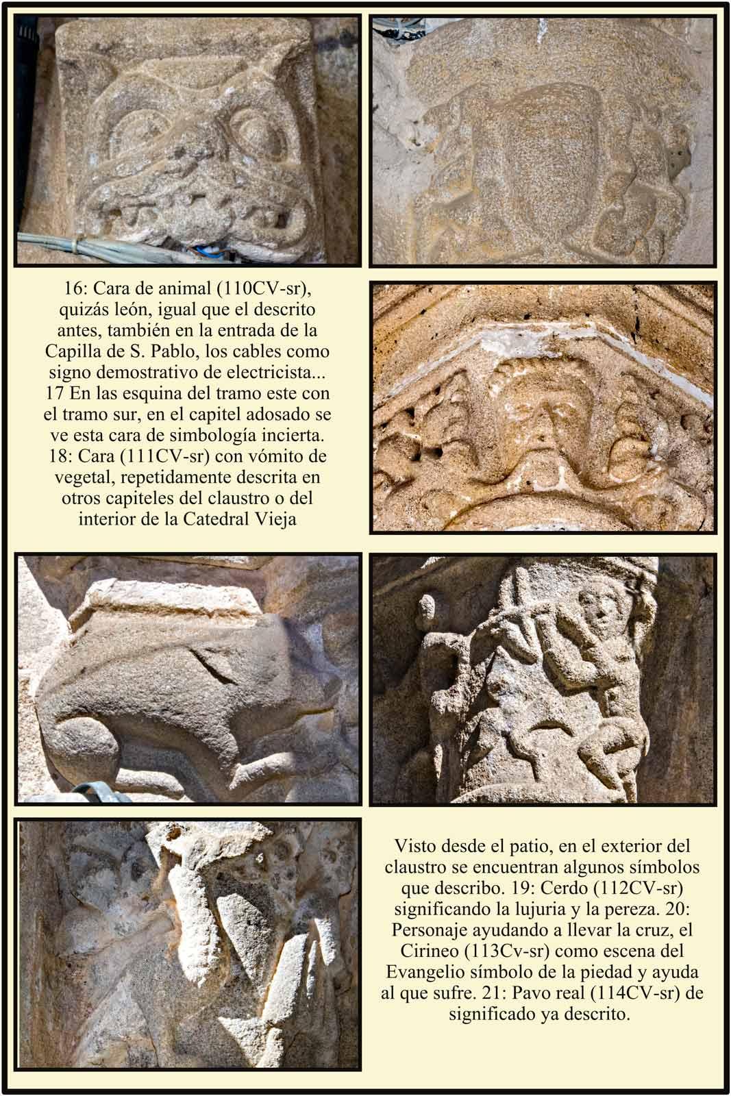 Cerdo como simbolo de la lujuria de la pereza o de algo negativo en el claustro de la Catedral romanica