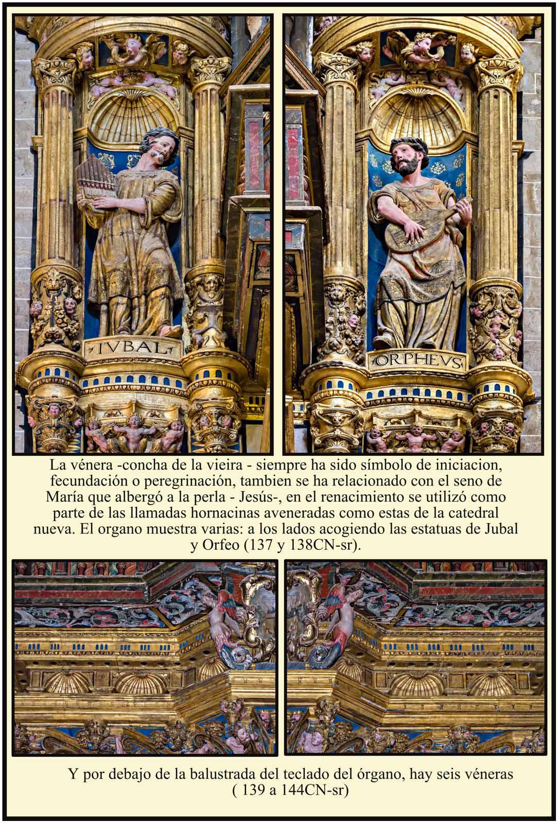 Organo barroco con hornacinas aveneradas y veneras